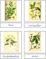 Tree Matching Cards (French)